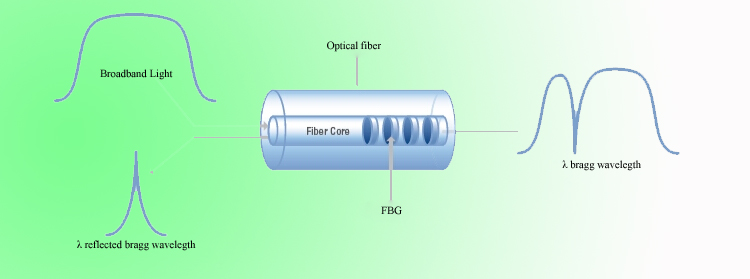 FBG sensor